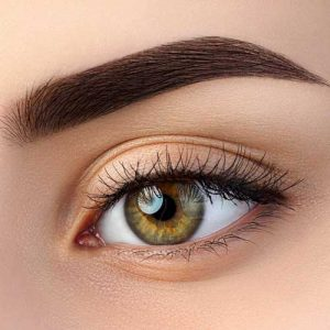 where can i find the best color brow tinting in orlando?